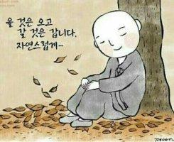관계(關係) 의 소중함 // 釜山의 情景 // 늙어가는 모습은 똑같더라 // 어머니의 섬 완도