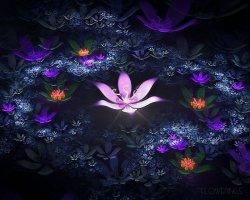 멋진 꽃 그림