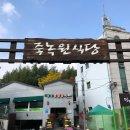 [담양] 1박2일여행: 죽녹원->관방제림->메타세쿼이아길->메타프로방스