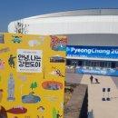 평창동계올림픽 피겨페어연습게임과 루지 직관 후기