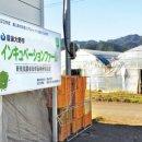 일본 귀농이야기