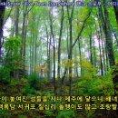 su nam and ha cheong il -Faldo sightsddting 서수남,하청일 - 팔도 유람 [번안곡]
