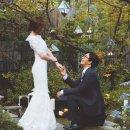 박수진 득녀 배용준 결혼이유