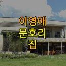 가로채널 이영애 고향집 아파트 위치 어디?