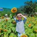 고성 왕곡마을, 운치 있는 한옥마을♡♡ 숙박 가능!!