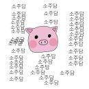 '프로듀스 101 시즌2' 탈락 연습생들 데뷔 예정 및 데뷔 현황 (스압)