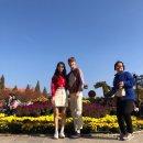익산 천만송이 국화축제 농대커플의 비글 데이트