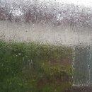 오늘의 청주 날씨 : 태풍 쁘라삐룬의 폭우