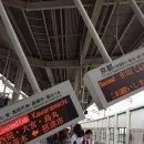 일본 오사카 지진 원인은?