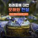 뉴트리아, 황소개구리 등 외래종에 대한 오해와 진실!