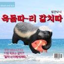 """김수현 """"서민에겐 집값 여전히 너무 높아…안정책 지속 추진""""(종합)"""