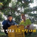tvN 풀 뜯어먹는 소리 재방송 다시보기 가을편