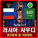 러시아 사우디아라비아 중계 및 각종 정보,월드컵 개막전 승자는?