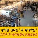2018 G-세라믹페어의 관람포인트 소개!