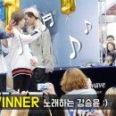 위너 WINNER 팬싸인회 Fansign Event : 하남 스타필드