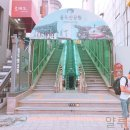 [ 애견 사진관 추천 ] 박지수 스튜디오 / 남포동 사진관