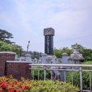 [밀양] 사진 애호가들의 사랑을 받고 이팝나무로 유명한 위양못(위양지)