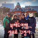 이상화 홍진영 서민정 양희은 뭉쳐야뜬다 북해도 여행편 재미있어요