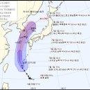 신임 안양.군포.의왕시장, 태풍 북상에 취임식 전격 취소