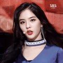 김용국 나현 소나무 열애 증거 고양이 유기설 루머 나이