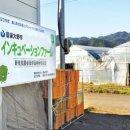 오이타<b>현</b>의 신규 농업인 양성 프로젝트<상>