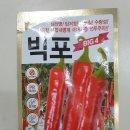 농우바이오 <b>빅포</b>(복합내병계) 고추종자 1봉