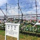 [힐링타임] 날씨가 다했다 _파주 임진각 & 평화누리공원