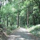 산 안톤 마을에서 라바꼬야까지 - 산티아고 순례길 걷기 여행기 79