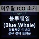 [ICO 리뷰] 블루웨일 (BlueWhale) - 프리랜서들을 위한 공유 경제 플랫폼
