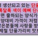 [해양수산]제철맞은 벌교 새꼬막 (대)사이즈 맛보세요!!