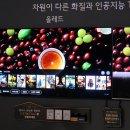 LG올레드TV AI ThinQ 인공지능 TV 2019년 신제품 추천