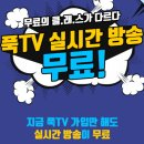 푹티비(pooq tv) 무료로 보는 방법, 실시간 tv 무료
