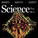 전세계 200여종의 양서류를 멸종시킨 한국의 개구리