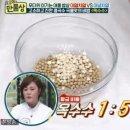 만물상 콩국수 이기주5분콩국수 만드는 방법 살림9단 만물상 5분 콩국수 비법