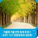 가을에 가볼 만한 축제 추천!! -JUST 12기 관광경영과 권은희-
