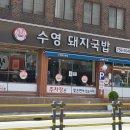 [부산 맛집] 수요미식회 부산 수영 돼지국밥.