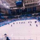 2018 평창 동계올림픽 | 여자 아이스하키 단일팀 vs 일본 관람후기