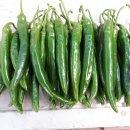 배추,호박잎,고구마순줄기.청양고추,오이,피망, 등등, (모둠야채) 장보러 오세요~