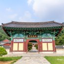 [전북 전주] 배롱나무 꽃이 아름다운 전주 정혜사