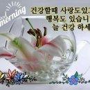 ★출석부★1월1일(화요일)/건강이최고(새해 복많이 받의시고 꽃아리 방장님 화이팅...