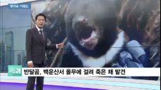 [핫이슈키워드] 해리 해리스·김명수의 선택·박경서 회장 성희롱·러시아 개막전 대승