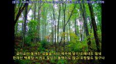 Seo su nam and ha cheong il -Faldo sightsddting 서수남,하청일 -