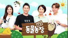 TV 동물농장 143회 무료 다시보기: [설날특집] 2004! 갑신년(甲申年) 원숭이 총출동 SBS