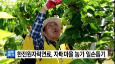 [대전·대덕] 한전원자력연료, 자매마을 과수농가 일손돕기
