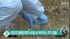[제주] 하도리 철새도래지서 H5형 AI 바이러스 추가 검출