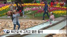 [날씨] 순천은 봄꽃 세상..퇴근길 미세먼지 '주의'